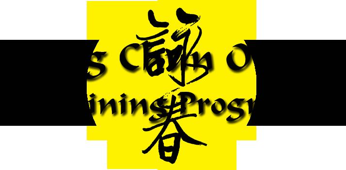 WCO-Training